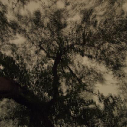 ハラダナオコ写真展  Harada Naoko 「見知らぬ夜」