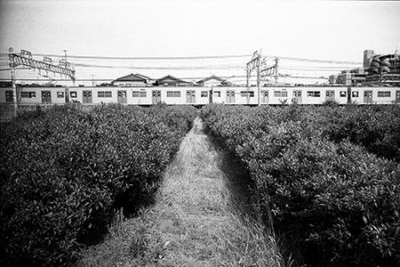宛超凡 Wan Chaofan [沿線—西武新宿線・拝島線]
