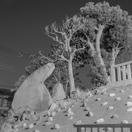 野々山 裕樹 Hiroki Nonoyama [Sleeping land]